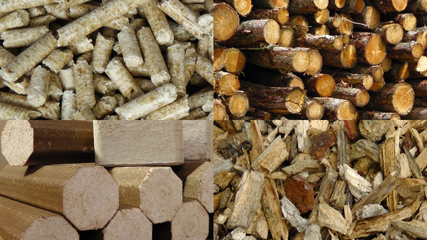 Wood Fuel products – Certified wood chip and bulk blown wood pellets