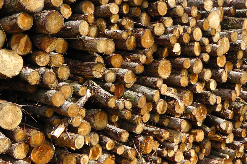 Wood Fuel for Heating